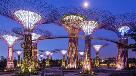 gardens by the bay 4 singaporeans favourite running routes you need to