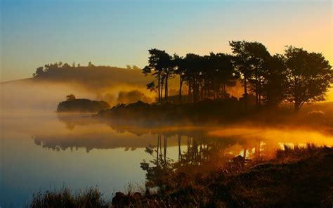 Landscapes Forest Nature Environment Lakes Sunrise