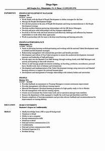 Relevant Experience Resume Samples People Resume Samples Velvet Jobs