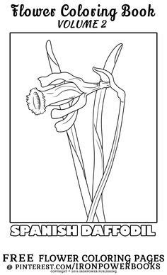 FREE Detailed Flower Coloring Page at @ironpowerbooks