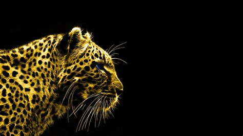 leopard animals black background fractalius wallpapers