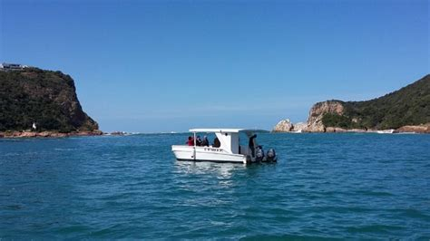 Boat Trip Knysna knysna charters boat trips in knysna knysna lagoon
