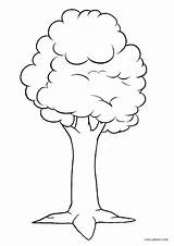 Coloring Tree Pages Printable Cool2bkids sketch template