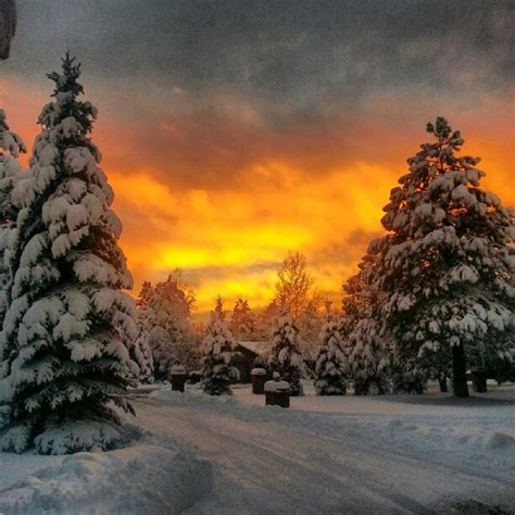 Top Winter Picture by 103 Best Images About Oh How I Miss Beautiful Arizona On