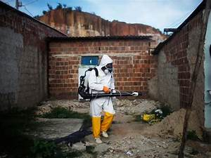 Zika virus: Conspiracy theories about GMO mosquitoes and ...