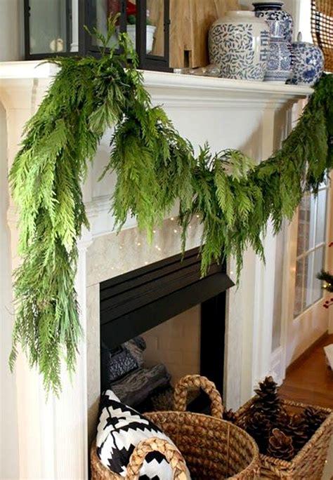 tips  tricks  decorating  evergreens