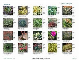 Aquatic, Plant, List, Of, Aquatic, Plant