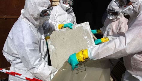 asbestos removal taylor group