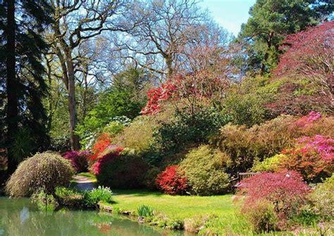 new gardens exbury gardens new forest and hotels nearby great british gardens