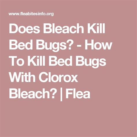 kitchen furniture ottawa can kill bed bugs 28 images can kill bed