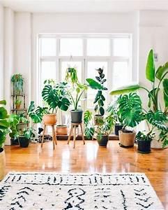 Zimmerpflanzen Für Schlafzimmer : 60 pflanzenstand designideen f r zimmerpflanzen ~ A.2002-acura-tl-radio.info Haus und Dekorationen
