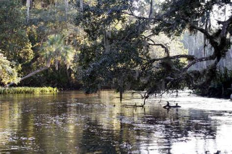 Who Owns The Winter Park Scenic Boat Tour by American Roads Travel Magazine