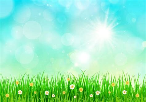 sunny sky spring background   vectors
