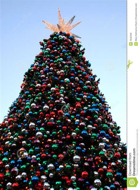 Big Christmas Tree Royalty Free Stock Image  Image 1642346