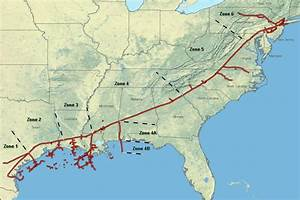 Ferc Approves Atlantic Coast  Mountain Valley Pipelines