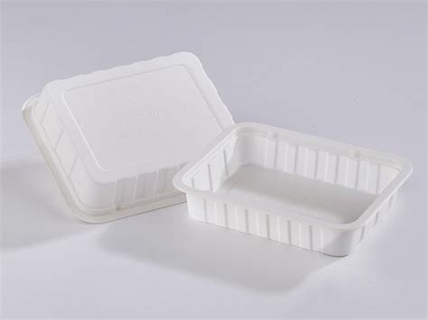 Global Thermoformed Plastic Market 2020 Industry Share ...