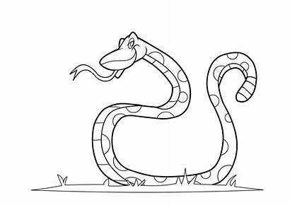 Snake Coloring Pages Printable Drawing Rattlesnake Anaconda