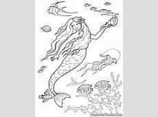 Film Kartun Duyung Die Bilder Coleection