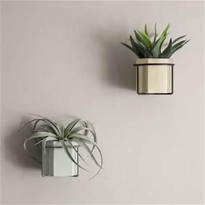 Support Plante Intérieur : support mural plant pour pot de fleurs gris ferm living ~ Teatrodelosmanantiales.com Idées de Décoration