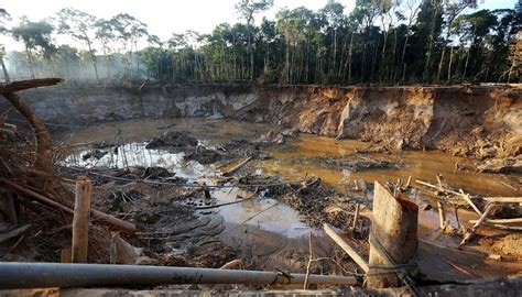 Effects of Gold Mining on the Environment | Sciencing