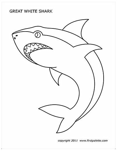 Shark Printable Printables Coloring Pages Templates Firstpalette
