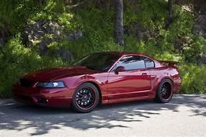 The best New Edge i've seen! : Mustang