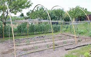Abri A Tomate : comment utiliser le bambou au jardin potager ~ Premium-room.com Idées de Décoration
