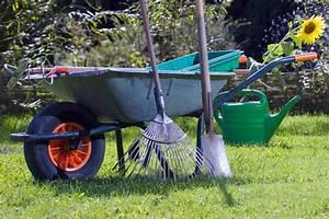Gelbe Stellen Im Rasen : rasen vom laub befreien landwirtschaftskammer nordrhein westfalen ~ Markanthonyermac.com Haus und Dekorationen