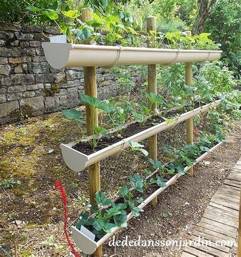 comment faire pousser des fraises en hauteur d 233 d 233 dans jardin insolite