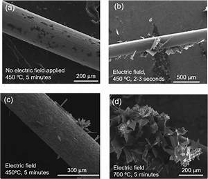 Sem Images Of The Surface Of A Mo Wire After Joule Heating