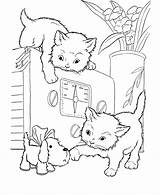 Coloring Pages Cats Kittens Playful Cat Digi Stamps Clips sketch template
