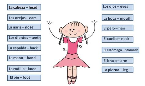 Body Parts In Spanish