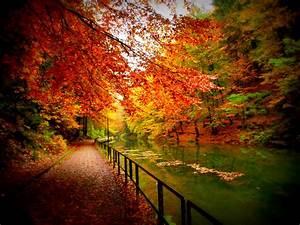 Kreativ Im Herbst : bastei im herbst amselsee foto bild natur kreativ ~ Lizthompson.info Haus und Dekorationen