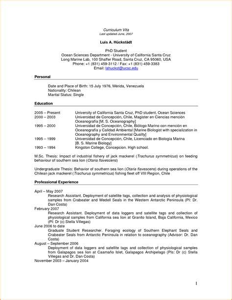 curriculum vitae pdf file resume format exles