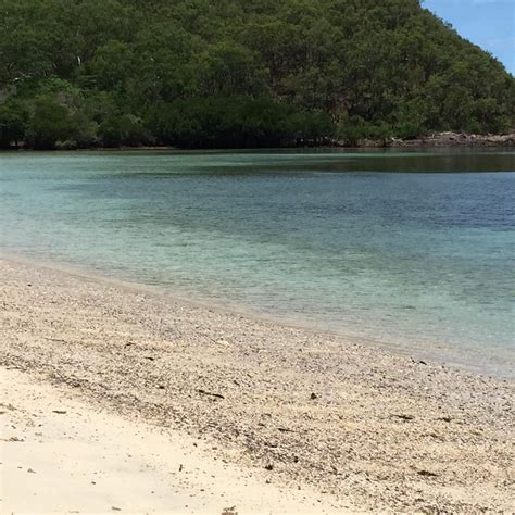 Charter Boat Port Douglas by Port Douglas Charter Boat Day Afternoon Or
