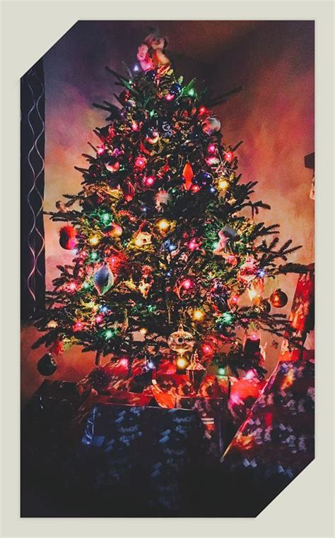 what do your christmas trees look like girlsaskguys
