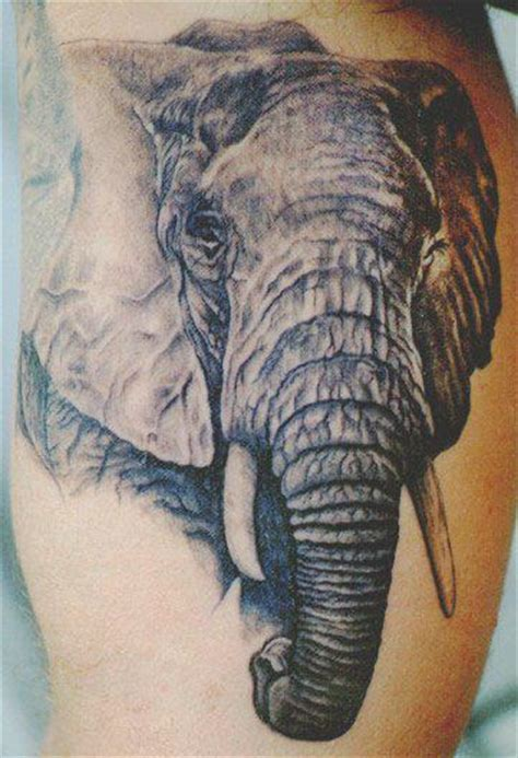 henna elephant tattoos
