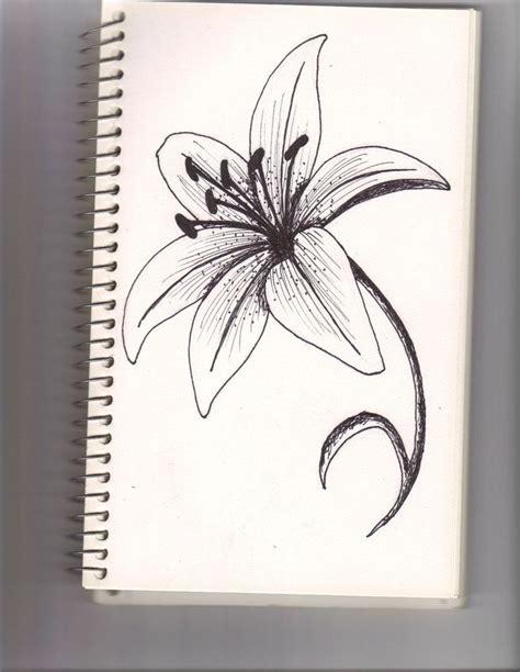lilium members    true lilies   genus