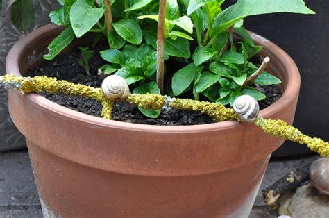 Garten Dekoration Diy by Diy Gartendekoration Aus Naturmaterialien Basteln
