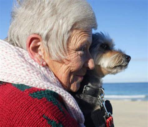 amazing ways dogs  change  lives  elderly humans