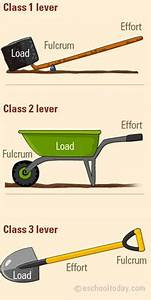 Simple Machines: Label and Identify the Levers | 수업용 ...