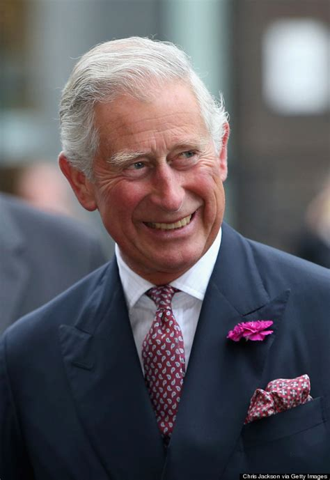 princes charles letters  ministers   published