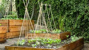 7 Steps to a DIY Edible Garden - Sunset Magazine - Sunset ...