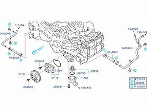 Subaru Forester Water Pump Diagram