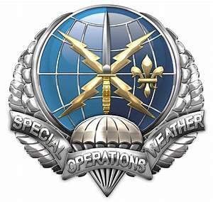 Military Insignia 3D : AFSOC Special Tactics: TACP, CCT ...