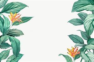 Templates For Website In Php Free Download Tropical Leaves Frame Free Stock Illustration 594536