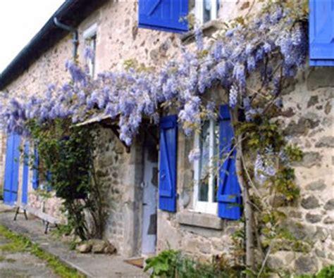 plantes grimpantes pour tapisser vos murs en beaute