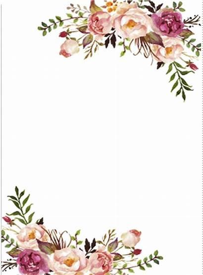 Flower Blush Clipart Pink Background Royalty Arka