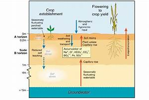 Hydrological Processes And Salinity Development Commonly