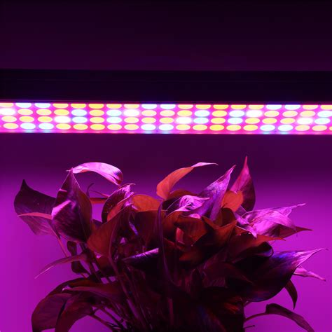 Growing Lamps For Indoor Plants Uk by Full Spectrum 60w Led Grow Light For Hydroponic Plants Veg